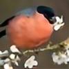 Bullfinch25's avatar