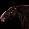 bumblebaee's avatar