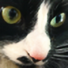 bunpancake's avatar