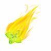 Burning-Carambola's avatar