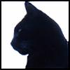 burroughs-bombay's avatar