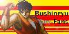 BushinryuGuy-Fans