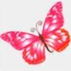 buterfligirl's avatar