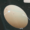 butheaart's avatar