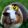 butterbagel's avatar