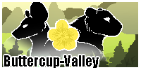 Buttercup-Valley