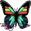 ButterflyDancer01's avatar