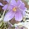 ButterflyWool12's avatar