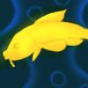 Butterly-Koi's avatar