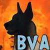 BV-Academy's avatar