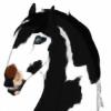 BVS-Isle's avatar