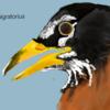 ByTheGalaxies's avatar