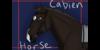 Cabien's avatar