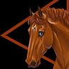 cadenz-a's avatar