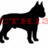 CaelynTheHedgehog13's avatar