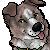 caffeinecollie's avatar