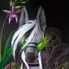 Cahandariella's avatar