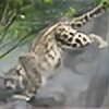 Cairue's avatar