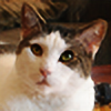 calamiti's avatar