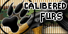 Calibered-Furs