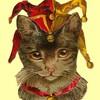CalicoCross's avatar