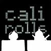 Calirolls's avatar