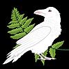 Calminsane's avatar