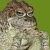 Cameron-Kiesser's avatar