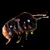 CamillaSakar's avatar