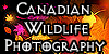 Canadian-Wildlife