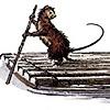 canalrat's avatar