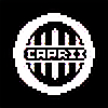 CapriiNight's avatar