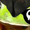 CaptainForg's avatar