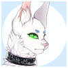 cardfightco's avatar
