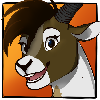 CarolGS's avatar