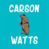 Carssson's avatar