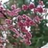 casedria's avatar