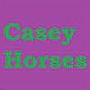 Caseyhorses's avatar