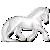 casinuba's avatar