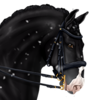 Casiro's avatar
