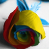 CassidyCreations's avatar