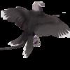 CassieProductions's avatar