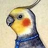 Cassinaa's avatar