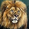 cassydraws's avatar