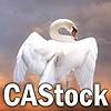 CAStock's avatar