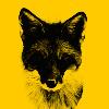 Cat-behemot's avatar