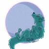 catanddogs's avatar