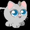 CatC-donations's avatar