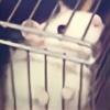 CatchMeBabyy's avatar