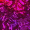 catlovesflowers's avatar